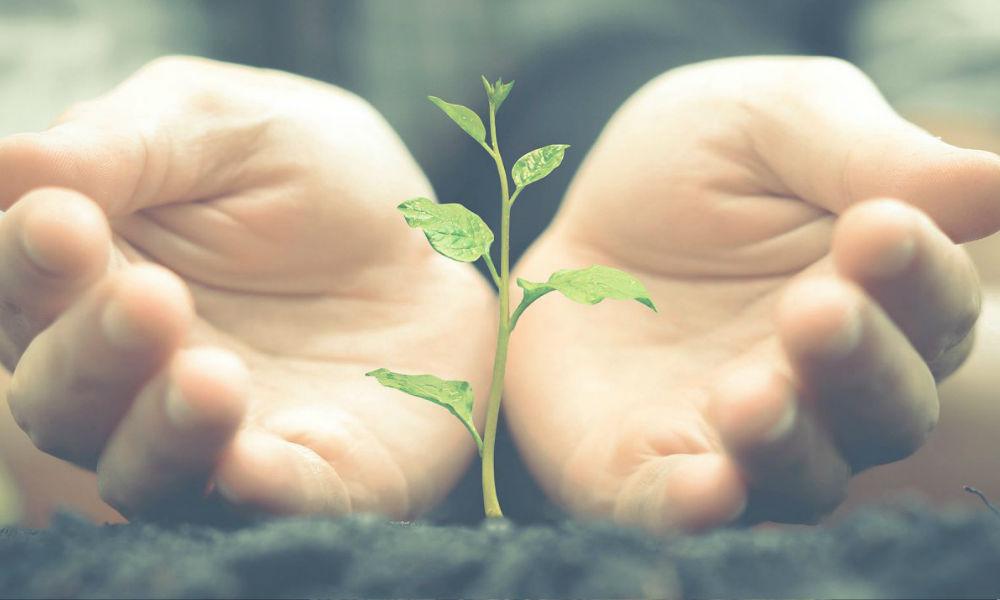 La huella de carbono de las empresas, ¿sabes lo que es?