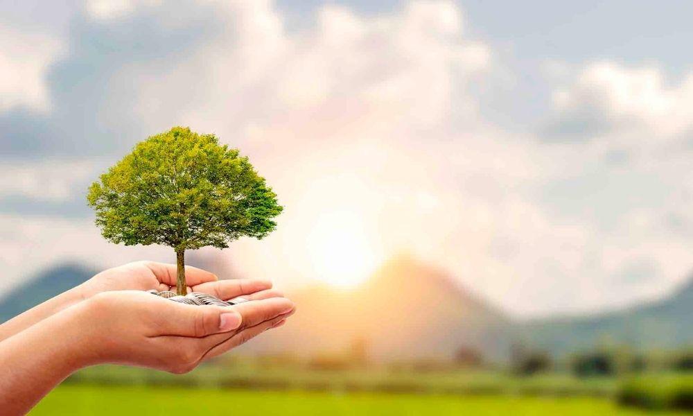 Invertir en fondos sostenibles es apostar por el futuro. ¡Te contamos por qué!