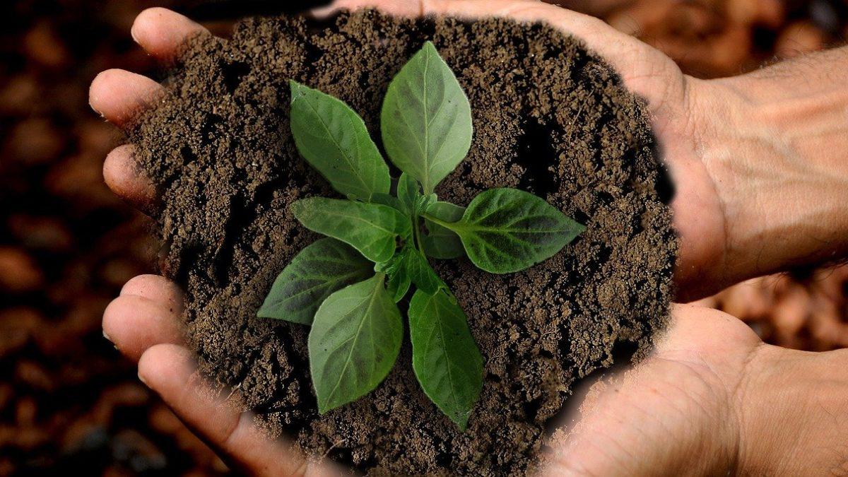20 de mayo de 2021 Webinar «Introduciendo la sostenibilidad en la internacionalización»