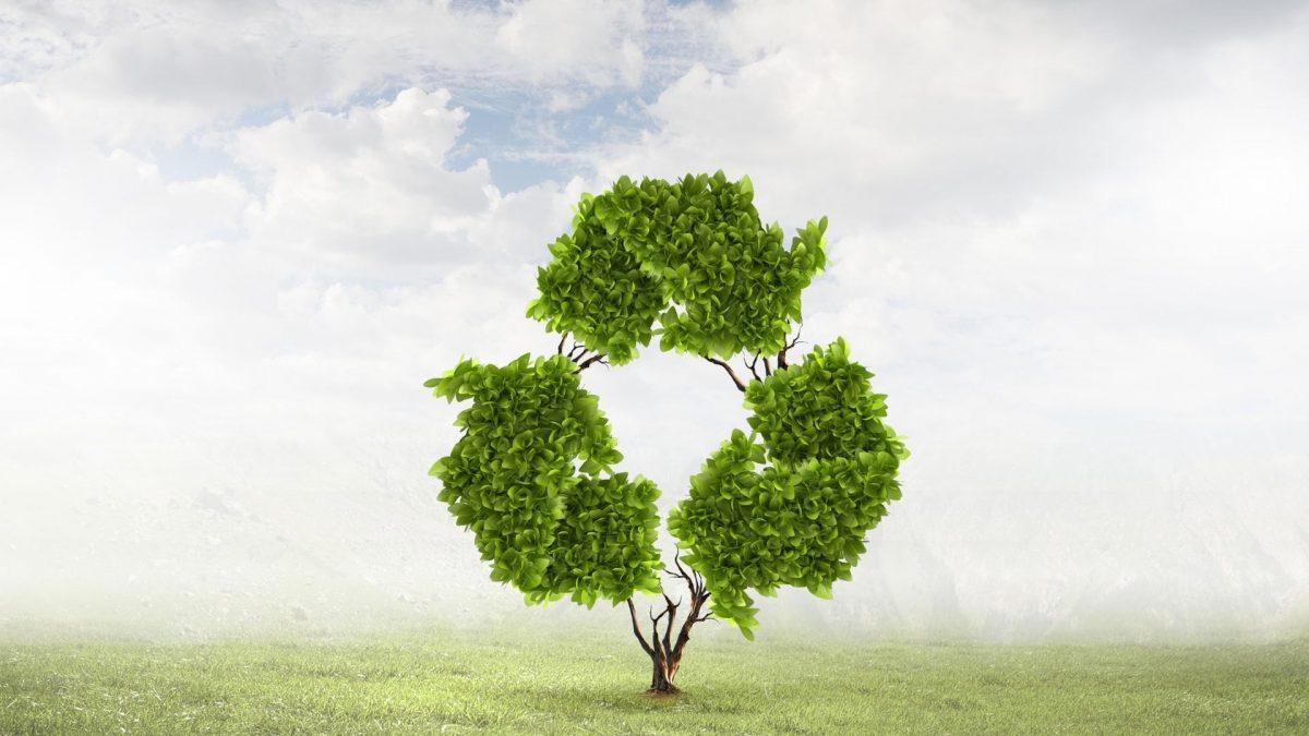Jornada: Alternativas verdes para las zonas rurales de Europa